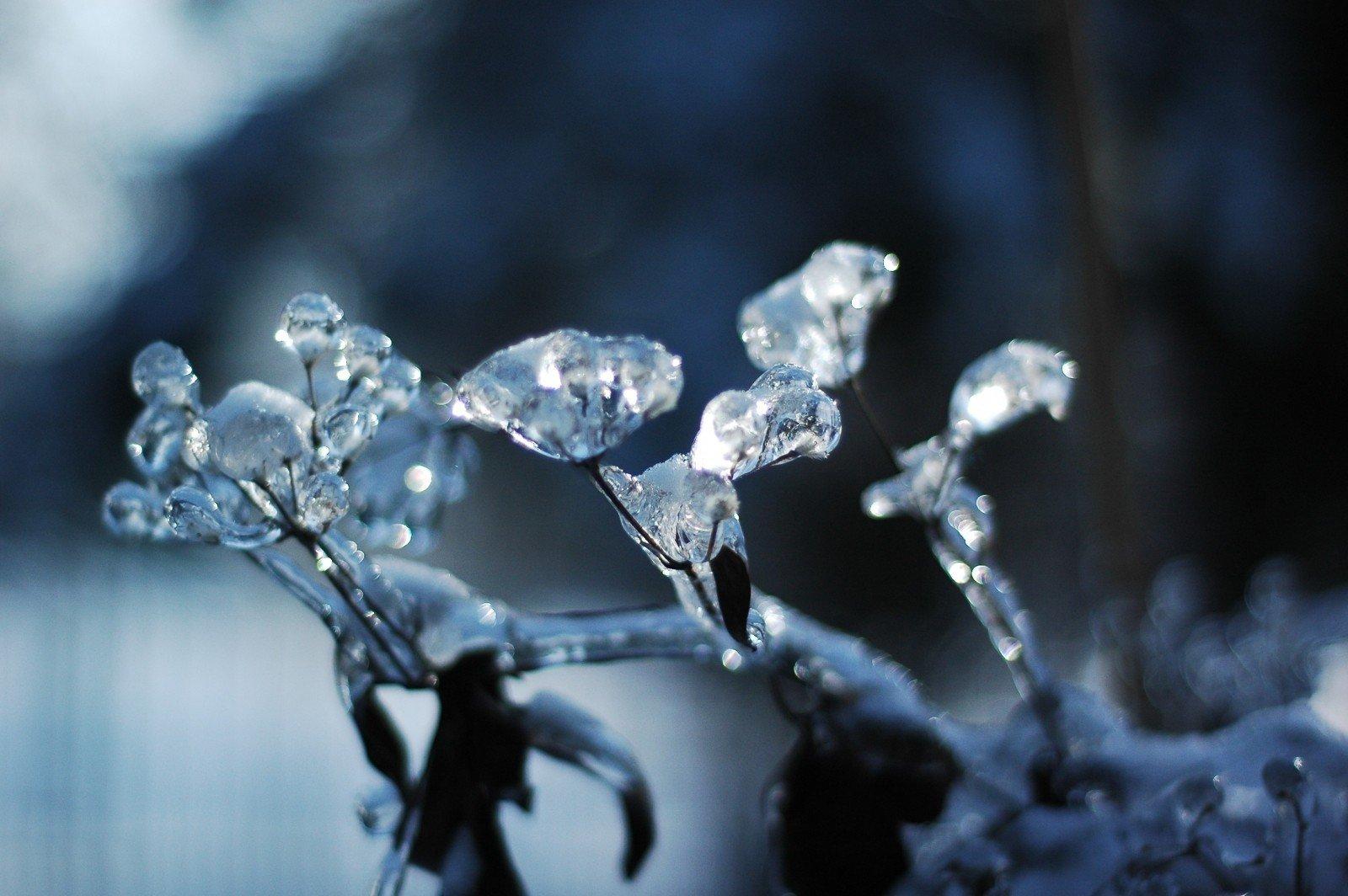 Astuces_Echauffement_froid_marche nordique